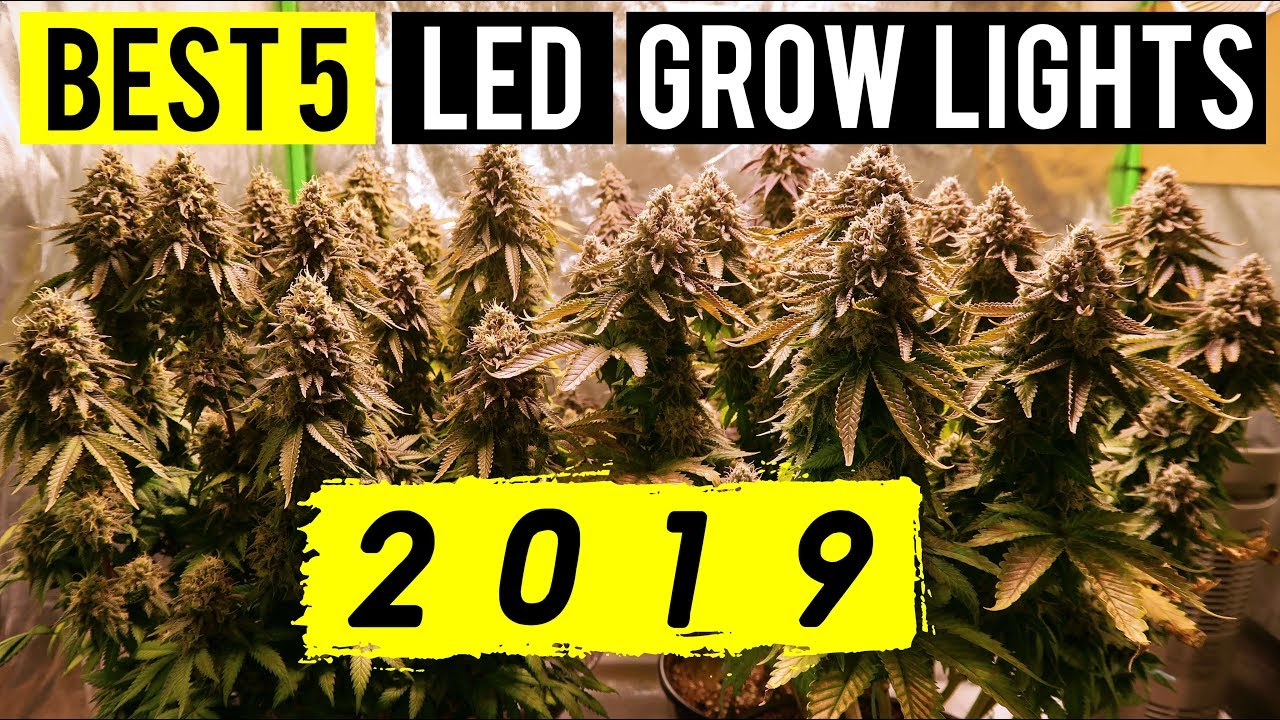 BEST 5 LED GROW LIGHTS 2019! – 5X5 COVERAGE AREA