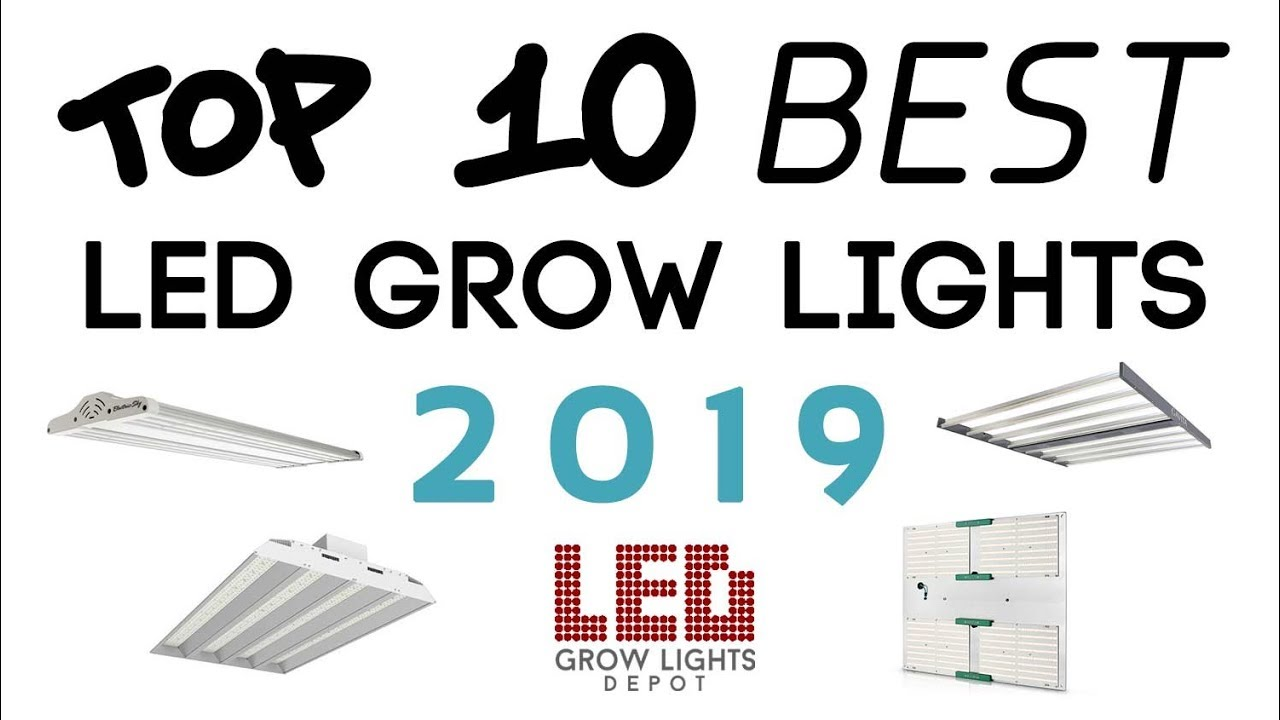 Top 10 Best LED Grow Lights 2019