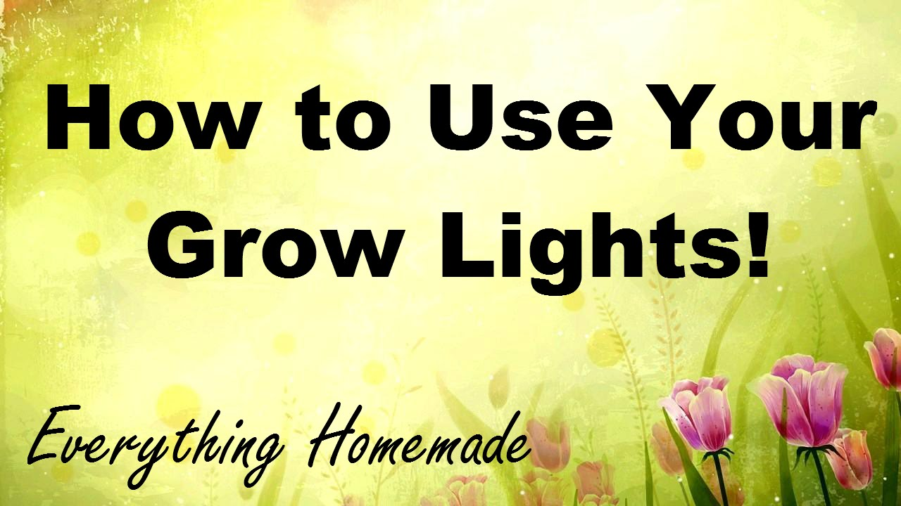 How to Use Your Grow Lights!
