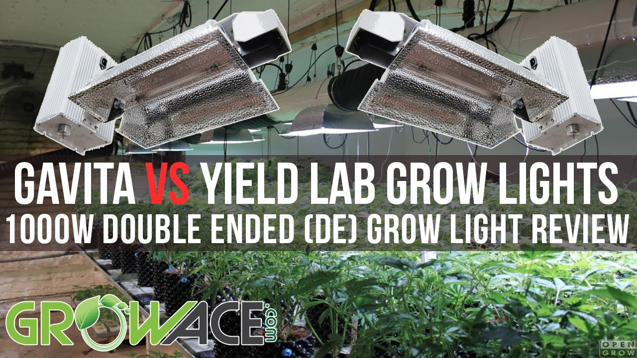 1000w DE Double Ended Gavita vs Yield Lab Grow Lights REVIEW Performance Test!