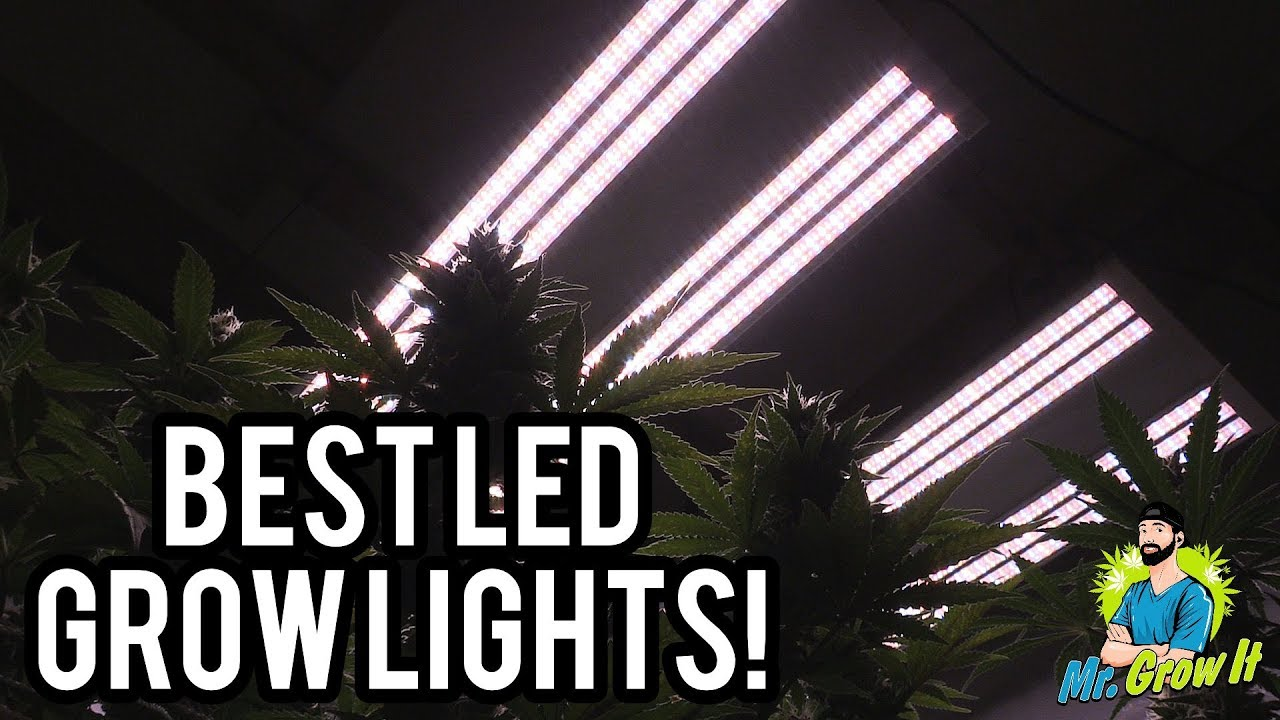 BEST LED GROW LIGHTS 2019! – 4X4 COVERAGE AREA
