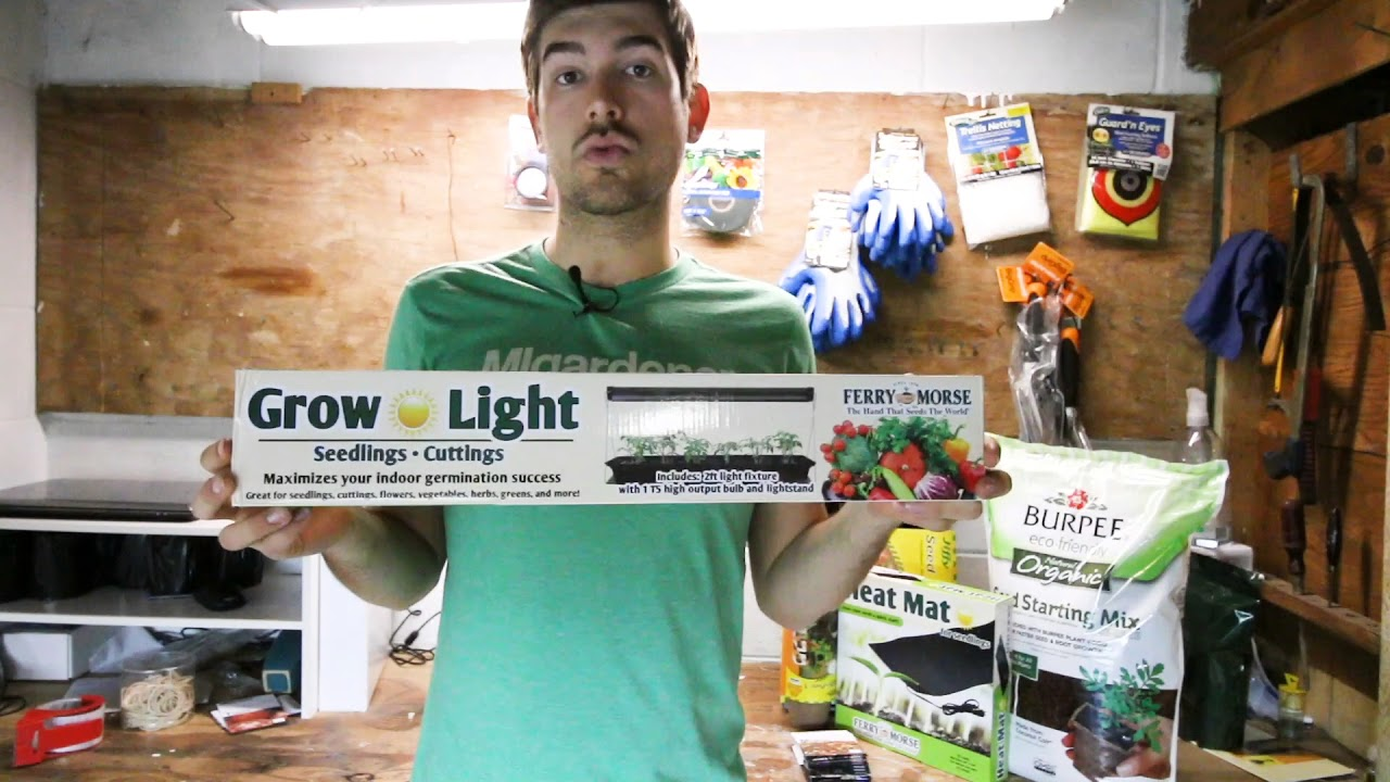 The Beginner's Kit to Mastering Seed Starting – Grow Lights