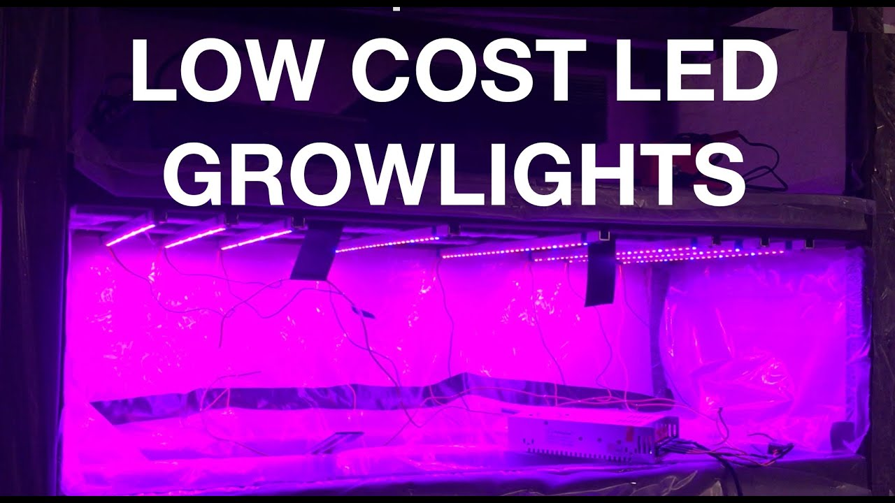 Micro Greens Project Part Two: Low Cost LED Grow Lights