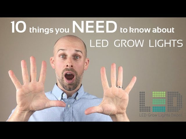 10 Things You NEED to Know About LED Grow Lights