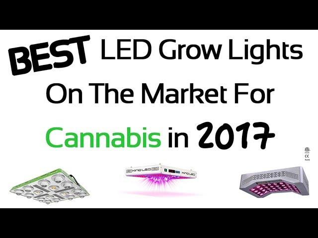 25 Best LED Grow Lights for Cannabis in 2017 – Review and Guide for Indoor Gardening