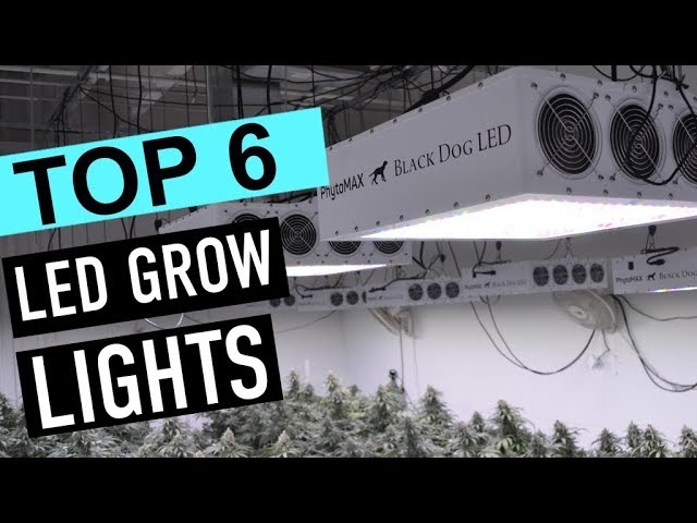 BEST 6: LED grow lights 2019