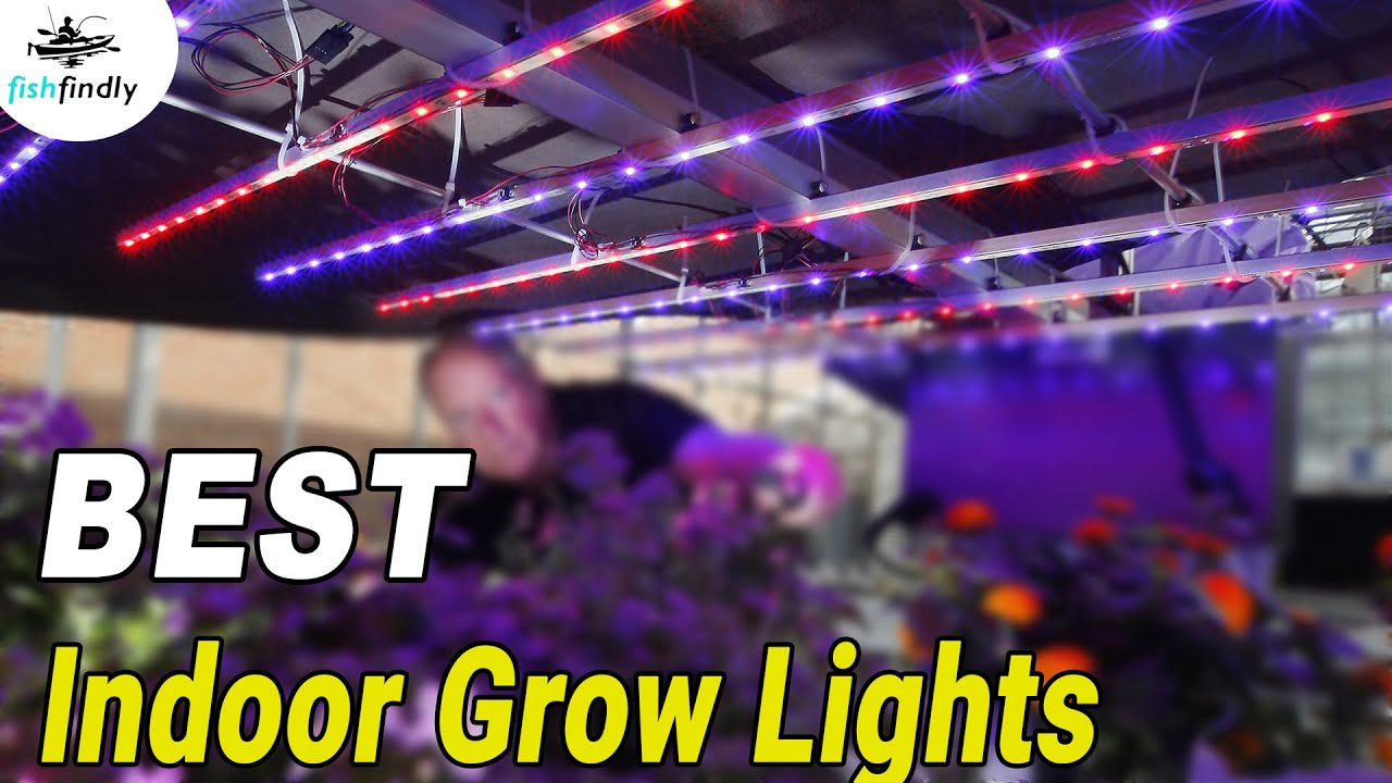 Best Indoor Grow Lights In 2019 – Top LED, Fluorescent & HID Models!