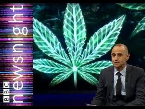 Can Cannabis oil reduce cancerous tumors?  – Newsnight