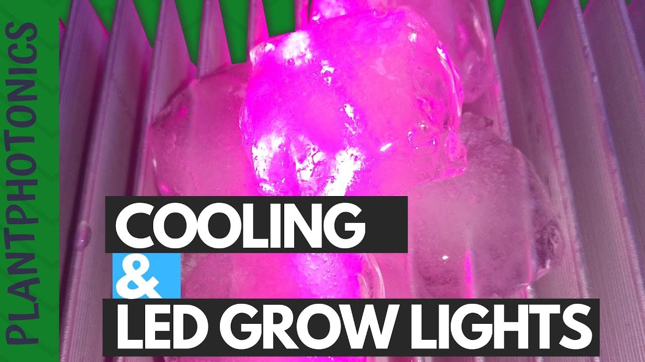 Cooling and Led Grow Lights