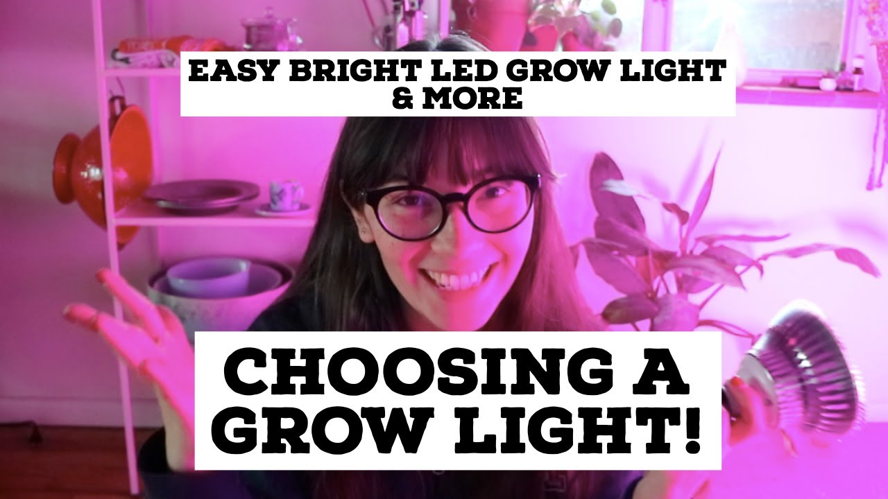 Let's Talk Grow Lights | Easy Bright LED Light & More!