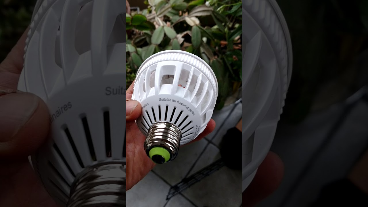 Review of Sansi Grow Lights For Flowering Cycle