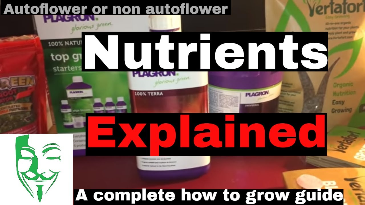 How, Why, How much, What Cannabis NUTRIENTS do you need? EVERYTHING about it.