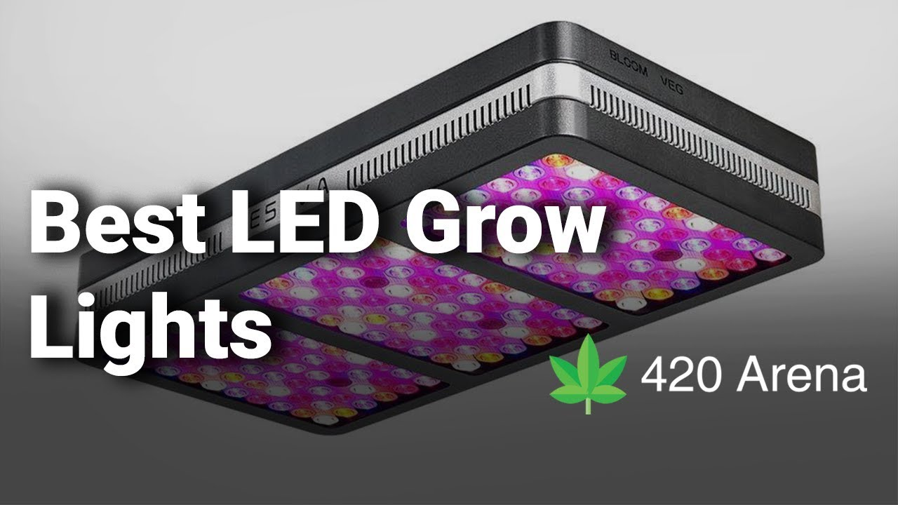 Best LED Grow Lights 2019 – Reviews for Weed, Cannabis, Money