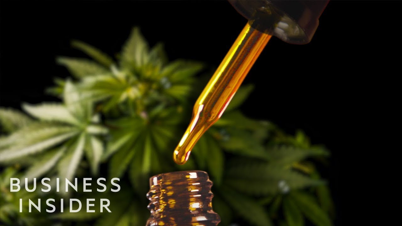 Why CBD Oil Is So Expensive   So Expensive