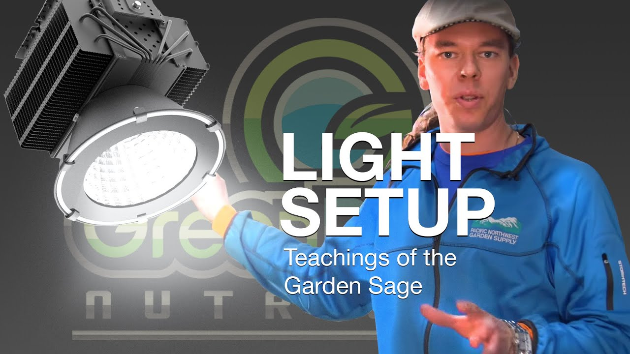 How many grow lights in one room? – The Garden Sage 13
