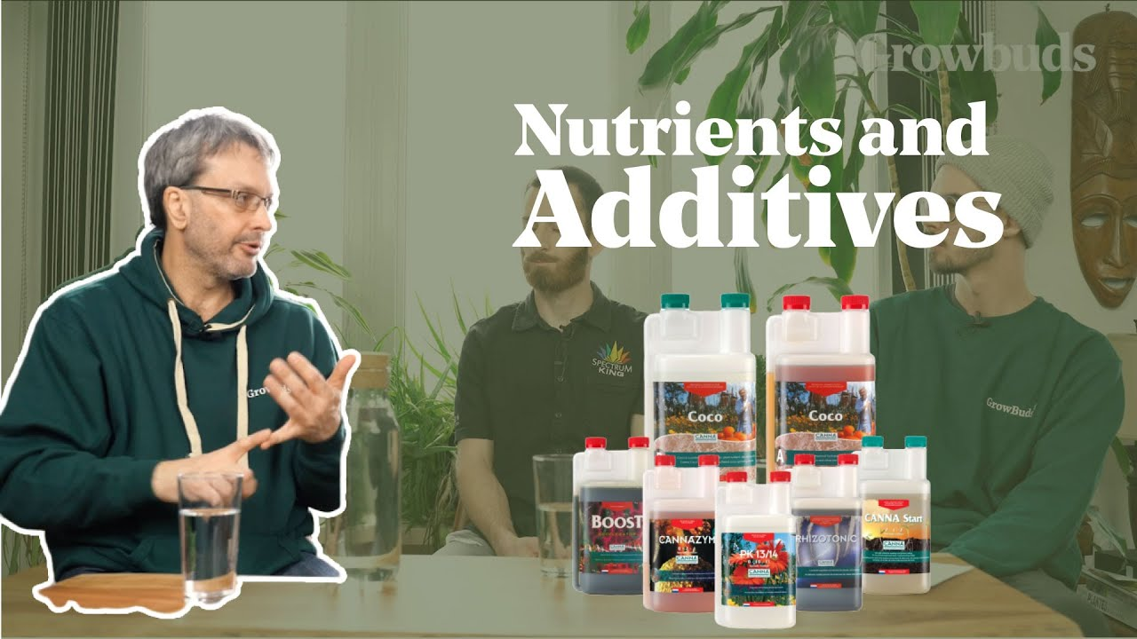 Nutrients & Additives Basics For Cannabis Growing | What You Need To Know