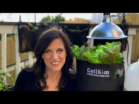 🍅 LIVE: Answers to Your Questions on Composting, Garden Overwhelm & Grow Lights (REPLAY)