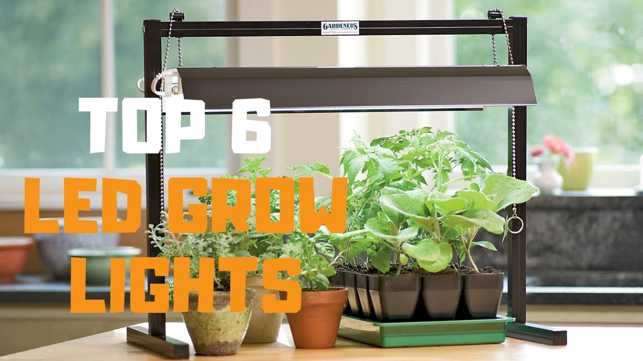 Best LED Grow Lights in 2019 – Top 6 LED Grow Lights Review