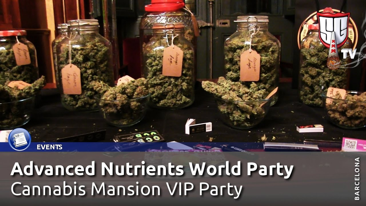 Cannabis World Party in Barcelona, Hosted by Advanced Nutrients! Smokers Guide TV Spain