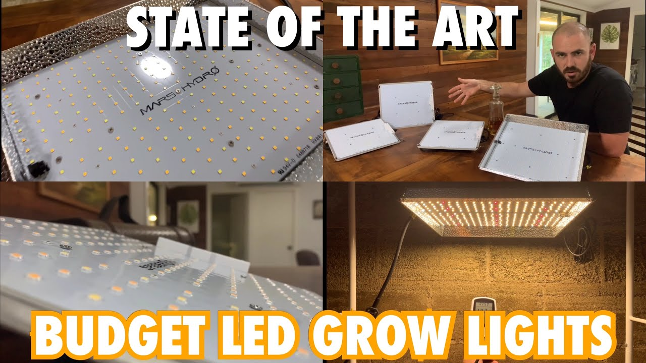 The State of Budget LED Grow Lights. A Guide to LED Lights. Mars Hydro TS1000 vs Spiderfarmer SF1000