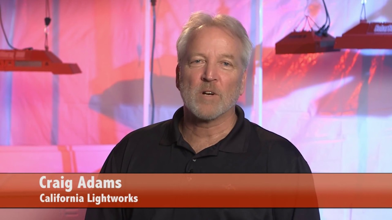 California LightWorks: The Leading Manufacturer of LED Grow Lights