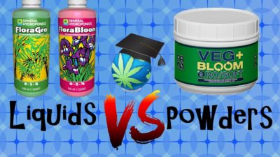 Powder Nutrients VS Liquid Nutrients – Differences, Similarities & Which Is BETTER