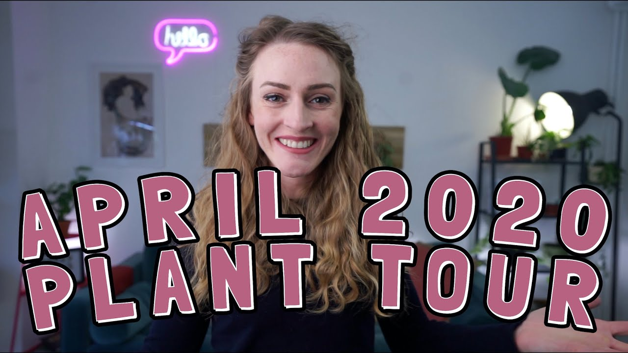 Houseplant tour and LED plant grow lights update: April 2020