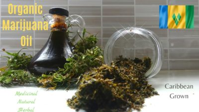 How to Make PURE Cannabis Oil