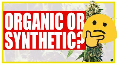 Organics vs Synthetic Nutrients: WHICH TO CHOOSE?