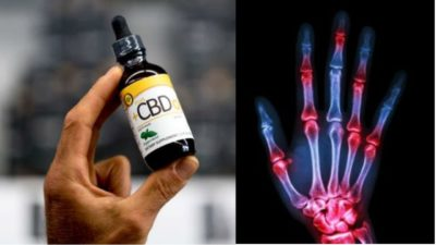 Effects In Your Body When You Start Using CBD Oil for Pain, Anxiety, Inflammation & More