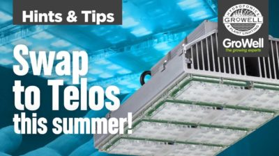 LED Grow Lights – Why Swap In Summer? | Hints & Tips
