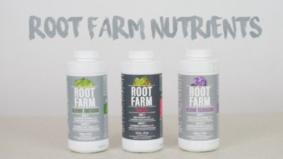 Growing Cannabis with Root Farm Nutrients