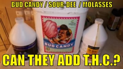 BUD CANDY. SOUR-DEE. MOLASSES. CAN THEY ADD T.H.C. TO YOUR PLANTS?