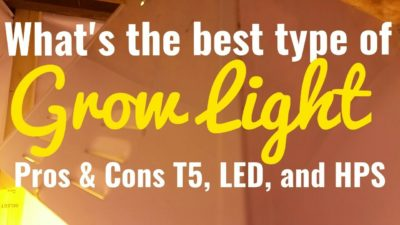 What's the best grow Light? 3 Types Of Grow Lights T5, LED, and HPS Pros and Cons
