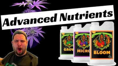 Advanced Nutrients- How To Mix It!