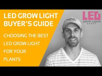 LED Grow Light Buyer's Guide  – How to Choose the Best LED Grow Light for your Plants