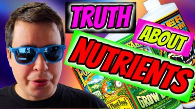 THE TRUTH ABOUT CANNABIS NUTRIENTS!