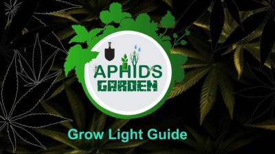 Grow Lights lm301b, lm301h alibaba and amazon. What and where to buy.