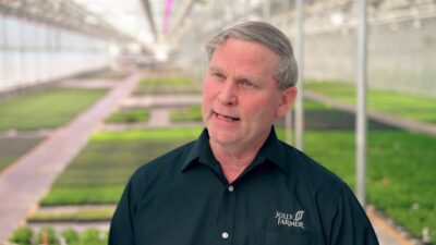 Grower installs Philips LED grow lights over more than four acres of greenhouses
