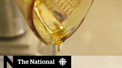 Cannabis oil shipped and sold illegally in Winnipeg