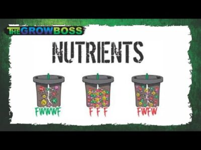 MIXING MARIJUANA NUTRIENTS E#4 HYDRO VS MEDIA- CALL THE GROWBOSS WEEKEND WEBCAST 10AM WITH QUESTIONS