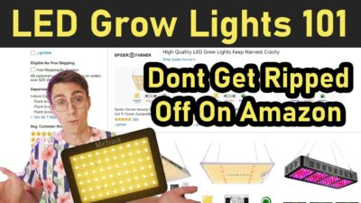 LED Grow Lights 101: What To Watch Out For When Buying From Amazon.com