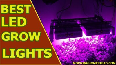 Top 6 Best Led Grow Lights for The Money [2019]