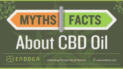 What is CBD Oil? CBD Myths and Facts – Endoca.com
