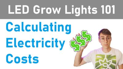 LED Grow Lights 101: Calculating Electricity Costs/Efficiency (Episode 1)