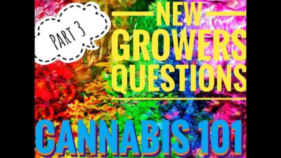 CANNABIS 101 New Growers Most Common Questions, LED Grow Lights