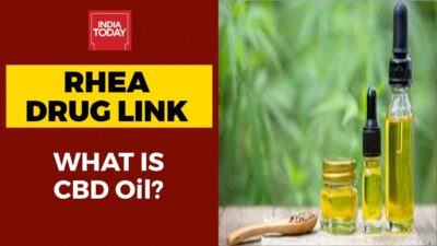 Rhea Chakraborty Drug Link: What Is CBD Oil? | India Today Exclusive