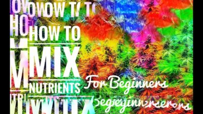 Cannabis: Mixing Nutrients for Beginners