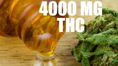 4000 MG THC ROSIN CHIPS!! STRONGEST CANNABIS OIL MADE WITH ROSIN PUCKS!