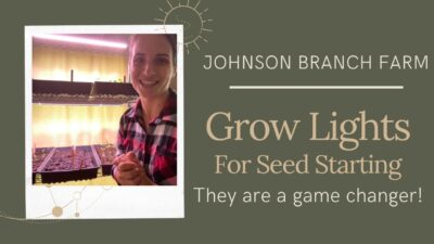 Grow Lights For Seed Starting  | They are a game changer!
